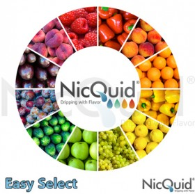 Finding the Best E-Liquid for 2017! -Top Brands & Flavors Reviewed -NicQuid by Smokeless Image -Full E-Liquid Review
